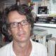 Article : Thomas Berns : «L'élargissement de l'espace public peut entraîner son affaiblissement»